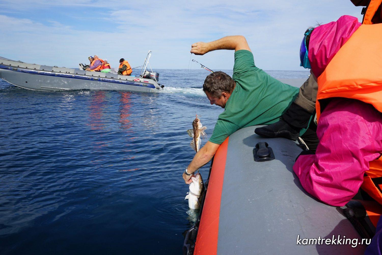 Камчатка туры, рыбалка на Камчатке