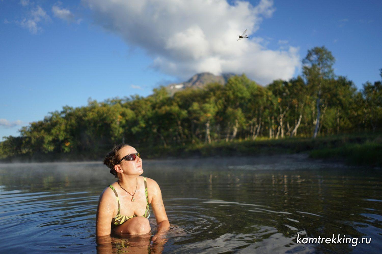 Туры на Камчатку, стрекоза